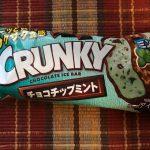 チョコミン党の方必見! チョコミントアイス3つ食べ比べてみた