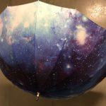 北斎グラフィックの16本骨傘を買いました! 雨の日にはお気に入りの傘で外に出よう。